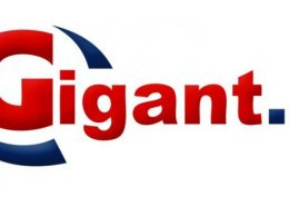Sklep internetowy Gigant.pl
